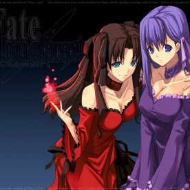 FATE STAY NIGHT _ PIKA EDITIONS